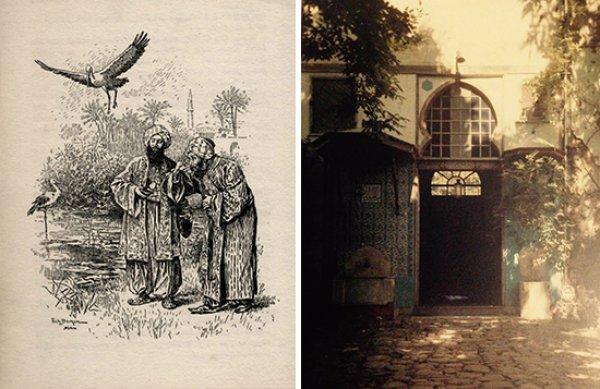 Dünyanın ilk hayvan hastanesini Osmanlı açmıştı #4