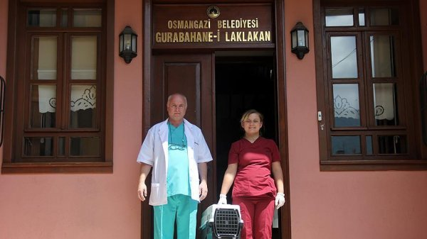 Dünyanın ilk hayvan hastanesini Osmanlı açmıştı #5