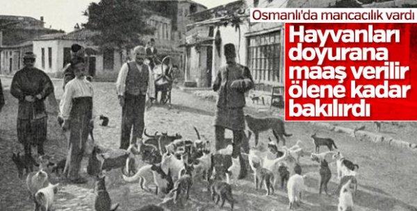Dünyanın ilk hayvan hastanesini Osmanlı açmıştı #6