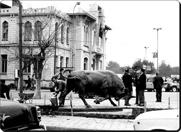Kadıköy ün simgesi Boğa Heykeli nin tarihi serüveni #4