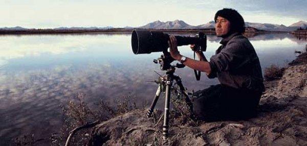Vahşi yaşam fotoğrafçısı Michio Hoshino'nun son fotoğrafı #1